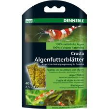 Nano nourriture à base d'algues Dennerle - 40 feuilles - 2,5x4,5cm