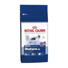 Croquettes Royal Canin pour chien senior de grande taille - 15kg