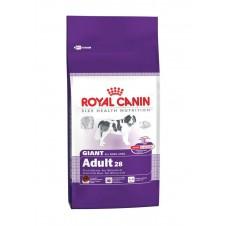 Croquettes Royal Canin pour chien géant - 15kg