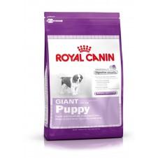 Croquettes Royal Canin pour jeune chiot géant - 4kg