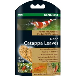 Nano catappa leaves Dennerle - 12 pièces