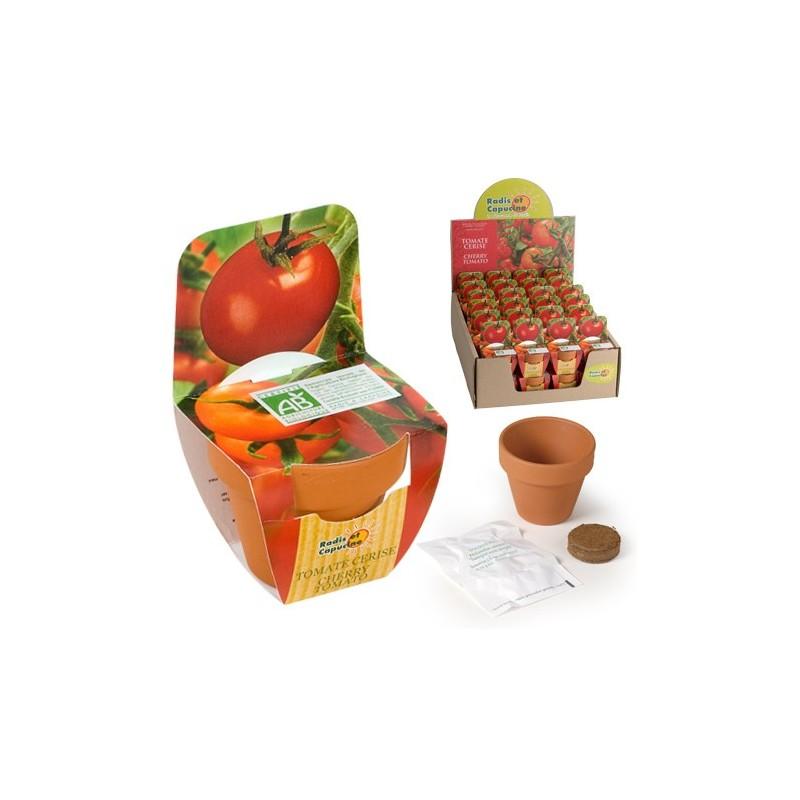 Mini kit plantation - Tomate cerise bio