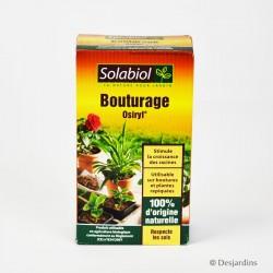Bouturage Osiryl Solabiol - 40ml