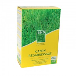 Gazon regarnissage BHS - 1kg