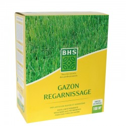 Gazon regarnissage BHS - 3kg