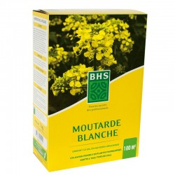 Moutarde blanche BHS - 500g