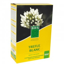 Trèfle blanc BHS - 500g