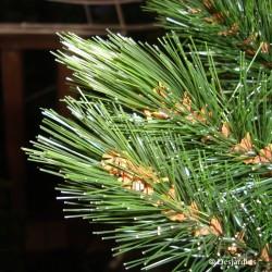 Sapin artificiel Forest Frosted vert - 90 cm de la marque Triumph Tree
