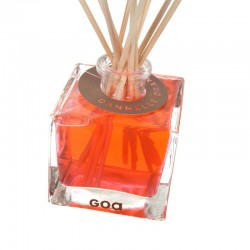 Cub Goa Cannelle / Orange - 80ml