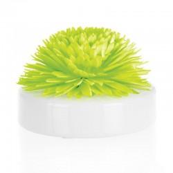 Coffret Fleur de Goatier - Christen 200 ml - Fleur de tiaré de la marque Clem Goa