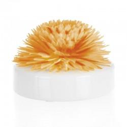 Coffret Fleur de Goatier - Christen 200 ml - Miel / Vanille de la marque Clem Goa