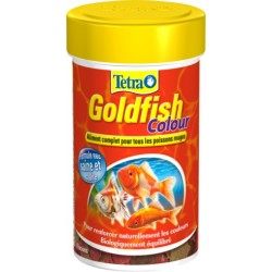 GOLDFISH COLOUR 100 ML