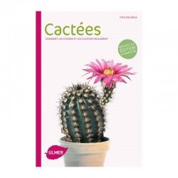 Cactées - Comment les choisir & les cultiver facilement