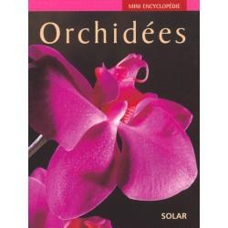 Mini encyclopédie - Orchidées