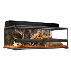 "Terrarium naturel ""Low"" -..."