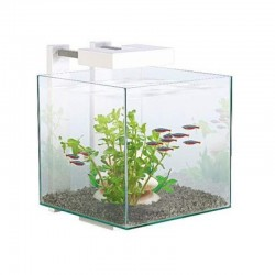 Nano aquarium équipé Ciano...