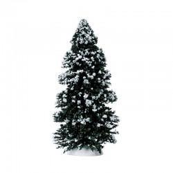 "Sapins ""Evergreen Tree"" -..."