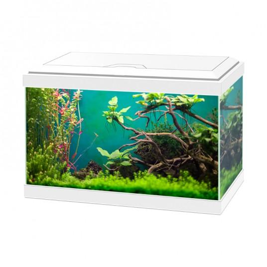 """Aquarium équipé Ciano """"Aqua 20 Light"""" - Blanc - 17L"""