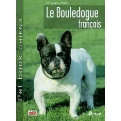 Bouledogue Français