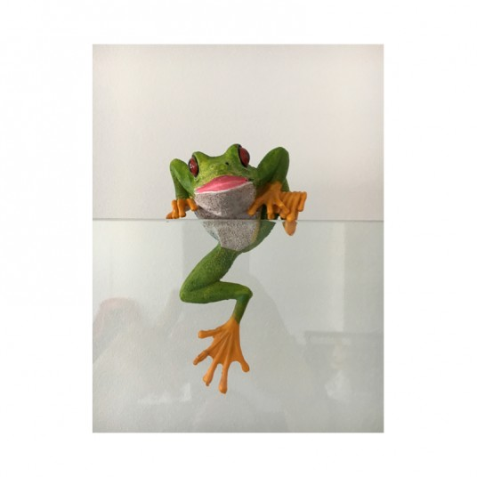 Décor d'aquarium à poser - grenouille