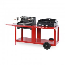Mixte barbecue + plancha...