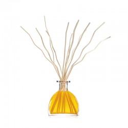 Diffuseur Goatier Origin 250 ml - Cèdre & vanille de la marque Clem Goa