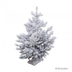 Sapin naturel glacé Abies Nordmann ROBIN® - 70/80 cm