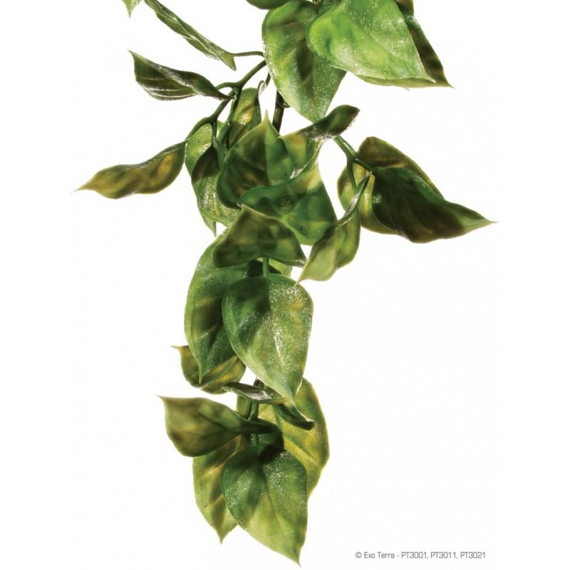 Amapallo synthétique - Exo Terra - grand modèle