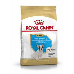 French Bulldog junior breed health nutrition 3kg - ROYAL CANIN