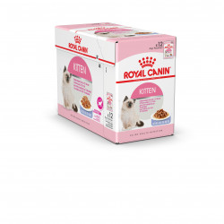 Humide chat Kitten gelée FHN wet 12x85g - ROYAL CANIN