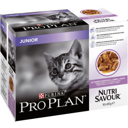 Pack chats-junior dinde sauce 10x85g - PURINA