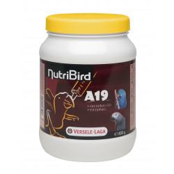 Nutribird A19 Aras Eclectus Et Gris Du Gabon 800 - VERSELE LAGA