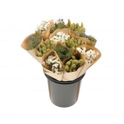 Botte de fleurs séchées blanc/vert