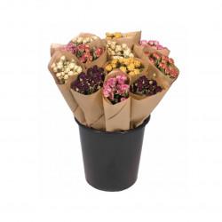 Botte de fleurs séchées tige rose