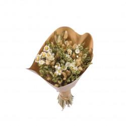 Bouquet de fleurs séchées L blanc/vert
