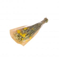 Bouquet de fleurs séchées S jaune/vert
