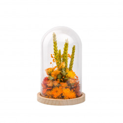 Compo fleurs séchées cloche L orange
