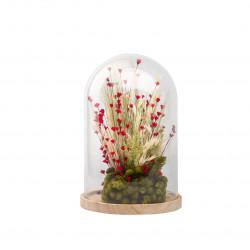 Compo fleurs séchées cloche L rouge
