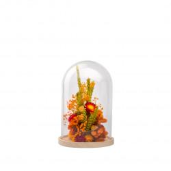 Compo fleurs séchées cloche S orange