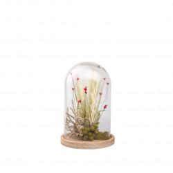 Compo fleurs séchées cloche S rouge