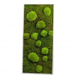 Tableau végétal mousse rectangle L