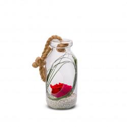 Verrine Bottle L