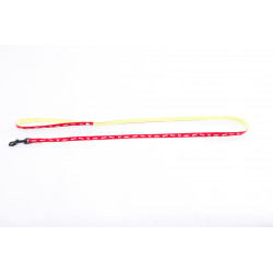 Laisse cat bicolore nylon 10mm-120 Rouge - MARTIN SELLIER
