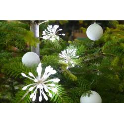 Bouquets super brillant microLED x6 blanc pur - BLACHERE