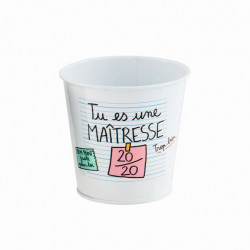 Pot multi-usages PAUL Maîtresse 20/20 - DLP