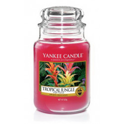 Bougie jarre GM Jungle tropicale - YANKEE CANDLE