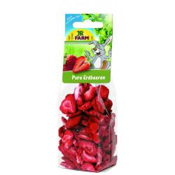 Friandise Friandises fraises pures-sachet 20g - BUBIMEX