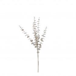 Branche eucalyptus 15x70-H4 champagne - EDELMAN