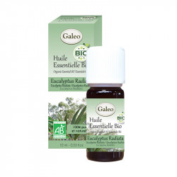 Huile essentielle bio AB eucalyptus radiata 10ml - GALEO