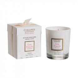 Bougie parfumée 250g rose blanche - COLLINES DE PROVENCE